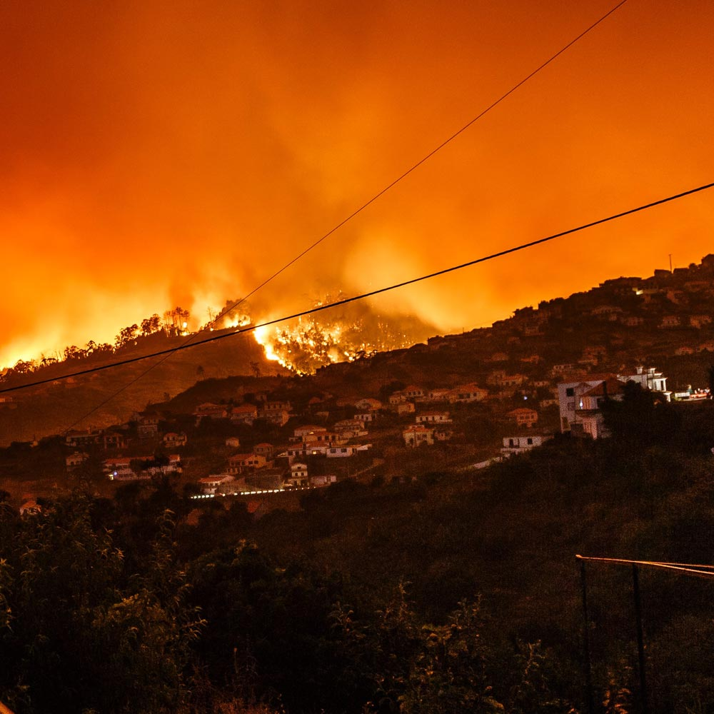 CKM Courses Good News in the Face of Bad News Image of Wildfire